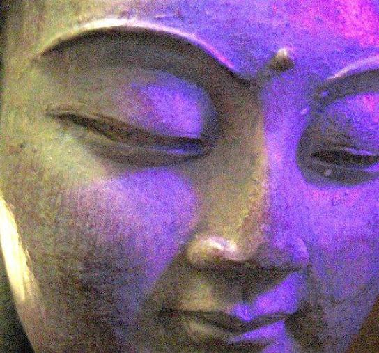 buddha lilac